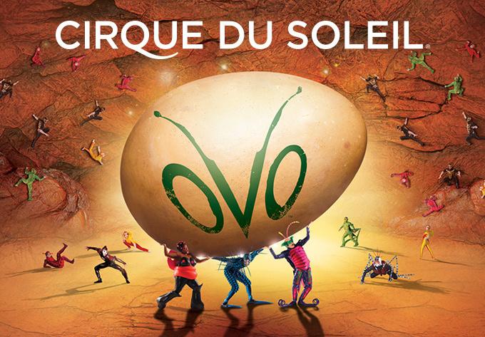 Cirque du Soleil - OVO, mercredi 13 septembre 2017 - Laval